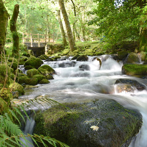 Stream and waterfalls on Cadair Idris walk route